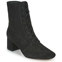 Shoes Women Ankle boots Clarks SHEER55 LACE Black