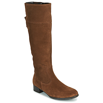 Shoes Women High boots Gabor 5550914 Camel
