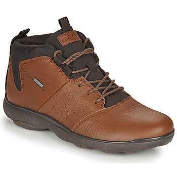 Shoes Men Mid boots Geox NEBULA 4 X 4 B ABX Brown