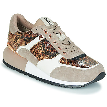 Shoes Women Low top trainers Gioseppo BELEBEY Brown