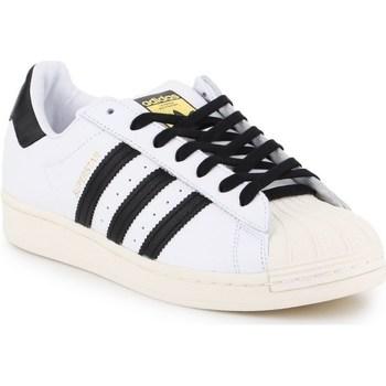 Shoes Men Low top trainers adidas Originals Superstar Laceless White,Black