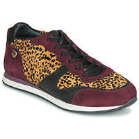 Shoes Women Low top trainers Pataugas IDOL/I F4E Bordeaux / Leopard