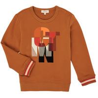 Clothing Boy Sweaters Catimini CR15024-63-C Brown