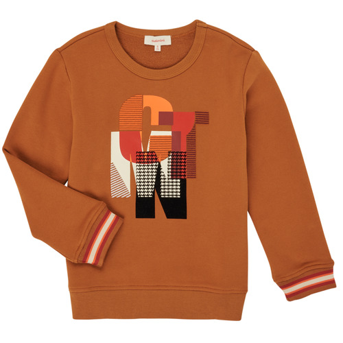 Clothing Boy Sweaters Catimini CR15024-63-J Brown