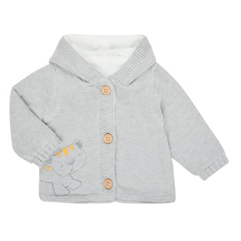Clothing Children Jackets / Cardigans Noukie's Z050001 Grey