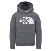 Clothing Children Sweaters The North Face DREW PEAK HOODIE Grey