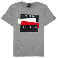 Clothing Boy Short-sleeved t-shirts Tommy Hilfiger KB0KB05849-P6U Grey