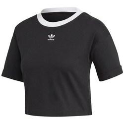 Clothing Women Short-sleeved t-shirts adidas Originals M10 Crop Top Black