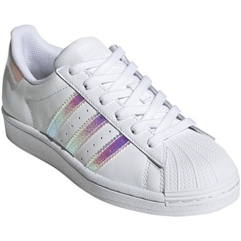 Shoes Women Low top trainers adidas Originals Superstar White