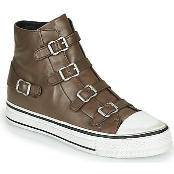 Shoes Women Hi top trainers Ash VIRGIN FANGO Grey