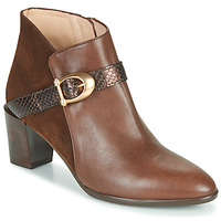 Shoes Women Ankle boots Hispanitas PIRINEO Brown