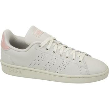 Shoes Women Low top trainers adidas Originals Advantage White
