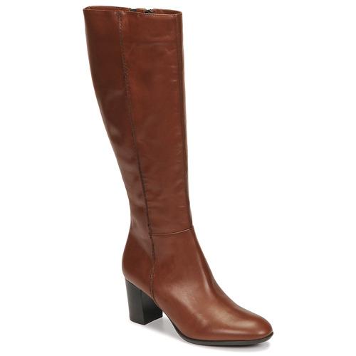 Shoes Women High boots Fericelli NAVAROIS Camel