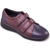 Shoes Women Derby Shoes & Brogues Padders Revive 2 Womens Casual Rip Tape Shoes Multicolour