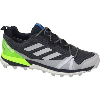 Shoes Men Walking shoes adidas Originals Terrex Skychaser LT Gtx Graphite,Celadon,Grey