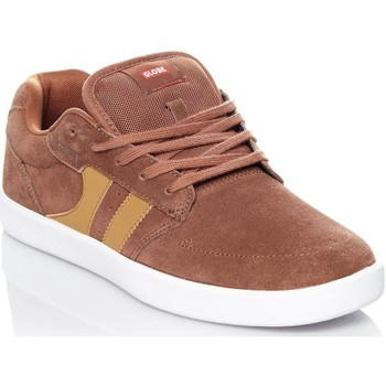 Shoes Men Low top trainers Globe Silverhide-Curry Octave Shoe Brown