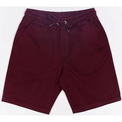 Clothing Men Shorts / Bermudas Wrung Short  Shark rouge bordeaux