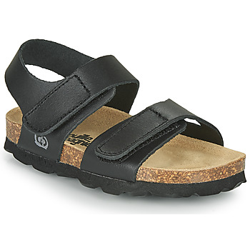 Shoes Boy Sandals Citrouille et Compagnie BELLI JOE Black