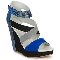 Shoes Women Sandals Serafini CARRY Black / Blue / Grey