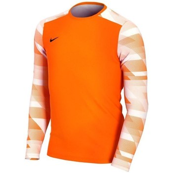 Clothing Boy Long sleeved tee-shirts Nike JR Dry Park IV Orange