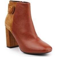Shoes Women Mid boots Geox D Audalies H C D643XC-04322-C6N2D brown