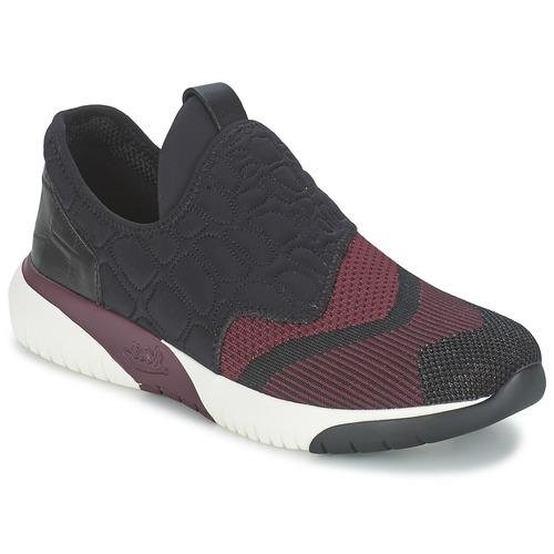Shoes Women Low top trainers Ash SODA Bordeaux