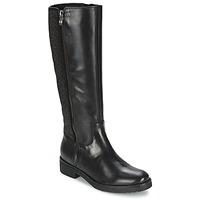 Shoes Women High boots Tosca Blu ABELLINUM Black