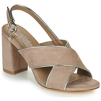 Shoes Women Sandals Xti  Taupe