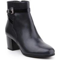 Shoes Women Ankle boots Geox D Petalus Black