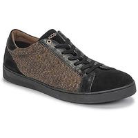 Shoes Men Low top trainers Kost CYCLISTE 55 Black / Brown