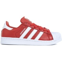 Shoes Men Low top trainers adidas Originals Superstar White,Red