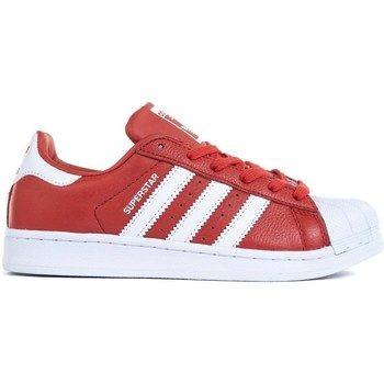 Shoes Men Low top trainers adidas Originals Superstar White, Red