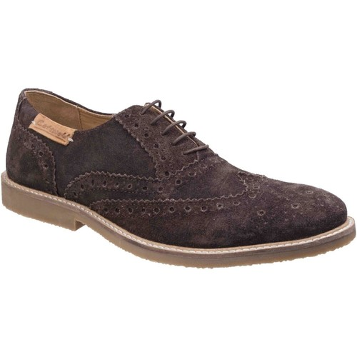 Shoes Men Brogues Cotswold 1649 Chatsworth Brown