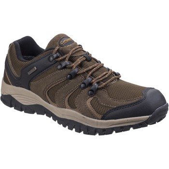 Shoes Men Walking shoes Cotswold Stowell Low Brown