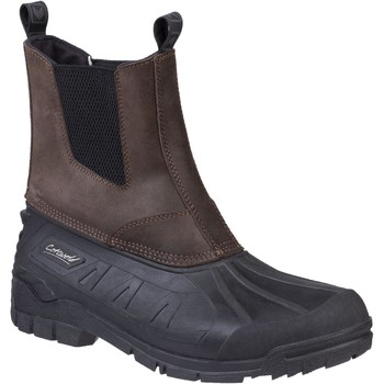 Shoes Men Wellington boots Cotswold F99289SPI Whiteway Brown