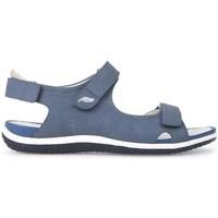Shoes Women Sandals Geox D Sand Vega A Blue