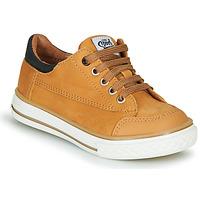 Shoes Boy Low top trainers GBB ETIO Cognac