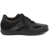 Shoes Men Low top trainers Lion DERBY  NERO    109,4
