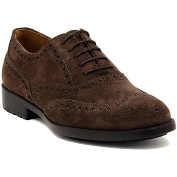 Shoes Men Brogues Marco Ferretti NEWPORT BROWN Multicolore