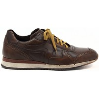 Shoes Men Low top trainers Lion SNEAKER BULGARO  CUOIO     99,7