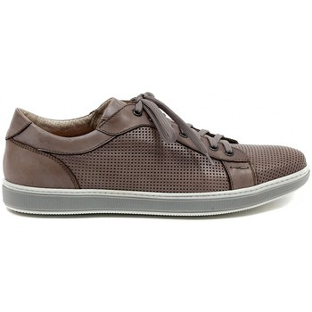 Low top trainers Lion 20746 ETRUSCO STAMPATO