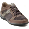 Shoes Men Low top trainers Lion ETRUSCO 211 PERLA Multicolore