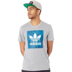 Clothing Men Short-sleeved t-shirts adidas Originals Core Heather BB Quartz T-Shirt Grey