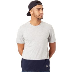Clothing Men Short-sleeved t-shirts O'neill Silver Melee Colorblock 2 T-Shirt Silver