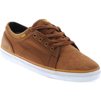 Shoes Men Low top trainers DVS Brown Canvas Rip Stop Aversa Shoe Brown