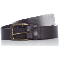 Clothes accessories Belts Globe Black Supply Belt Black