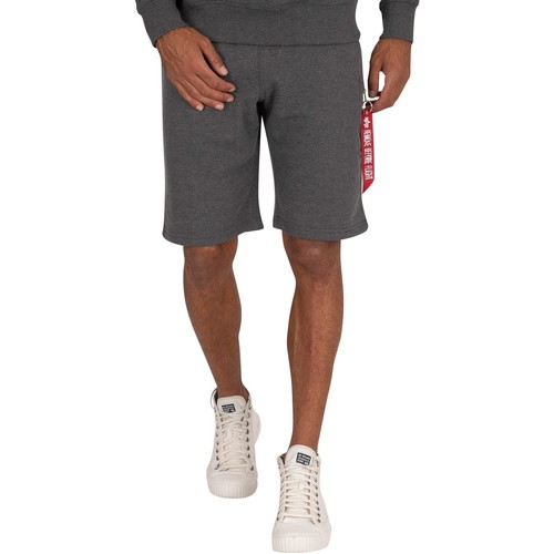 Clothing Men Shorts / Bermudas Alpha X-Fit Cargo Shorts grey