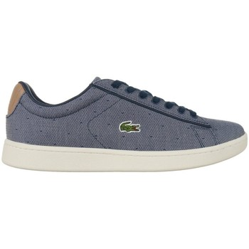 Shoes Women Low top trainers Lacoste Carnaby Evo Grey