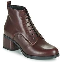 Shoes Women Ankle boots André EADBERT Bordeaux