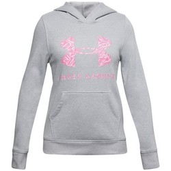 Clothing Girl Sweaters Under Armour Rival Fleece Sportstyle Graphic Hoodie Grey